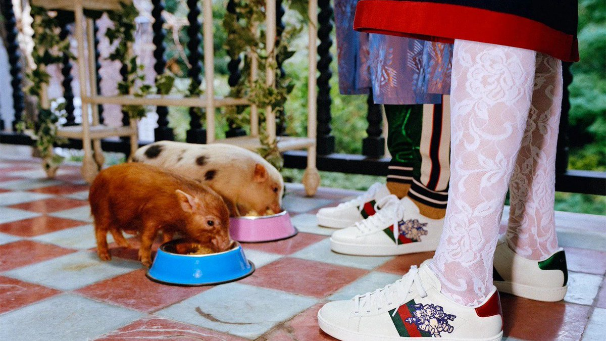 Sooooo Gucci just released pig-themed lookbook to celebrate Chinese New Year. 🐷🐷🐷 https://t.co/gl5HRZrmSO