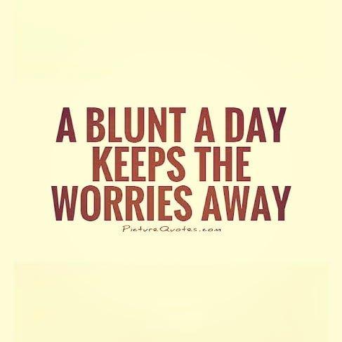 Easy Baked's photo on #cannabis