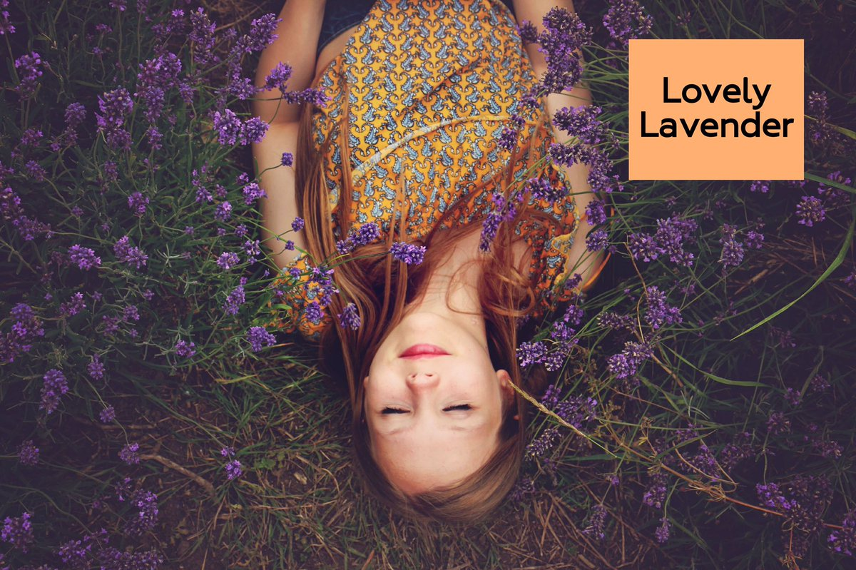 Lavender is super sustainable. It grows so abundantly, that it's seen as a weed in some parts of the planet! We for sure don't mind if it wants to grow in our garden. #lavender #lavenderlove #aromatherapy #essentialoils #organicbeauty #veganbeauty <br>http://pic.twitter.com/LM4u9CJlsP