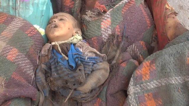 saleh faraj's photo on Yémen