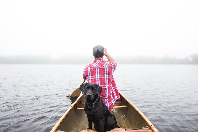 Good morning and happy #SaturdayMorning 🌞 Make special plans for some fun-filled quality time with your pet this weekend 🐕🐈🥏🚣♂️🚗🏖️❄️⚽️🏃♂️🏃♀️🐕🐈 Photo