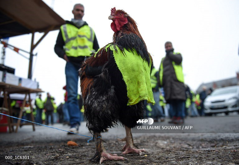 🇫🇷 France's 'yellow vests' mobilise for fresh round of protests http://u.afp.com/JkUC  📷 @gsouvant @ludovic_marin #AFP #gilletesjaunes #YellowVests