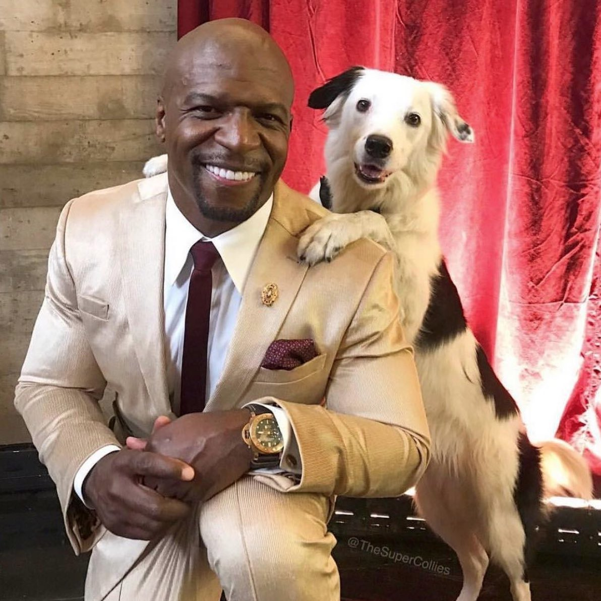 TOP DOG TERRY! WOOF!   More @agt on Monday!!!<br>http://pic.twitter.com/fr5TeKMmvf