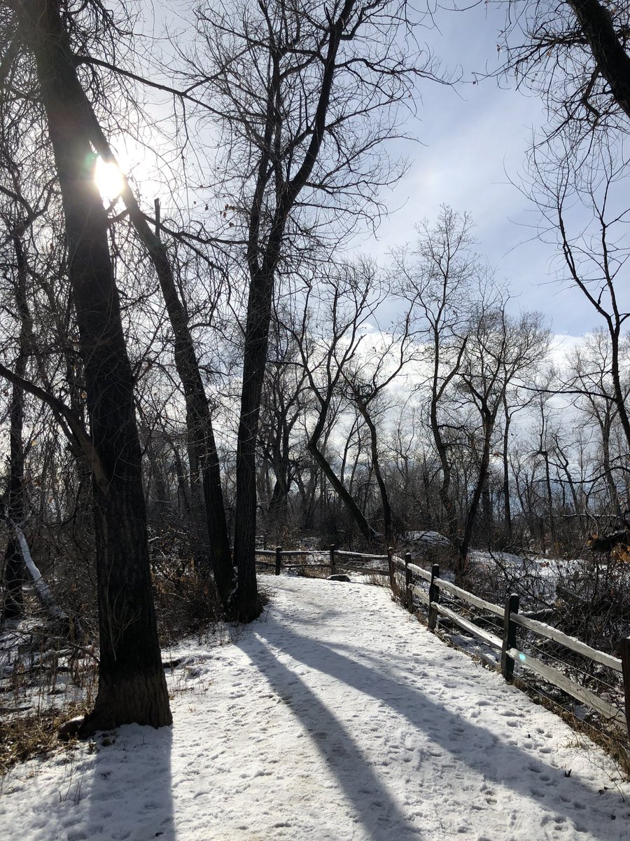 Cisca Louise On Twitter Winter Walk Along The Bobolink Trail And