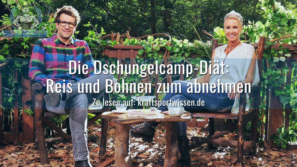 kraftsportwissen.de's photo on #Dschungelcamp