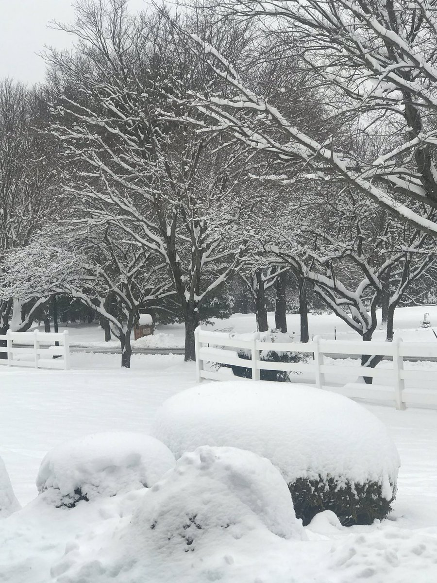 It's a winter wonderland here in the DC area.