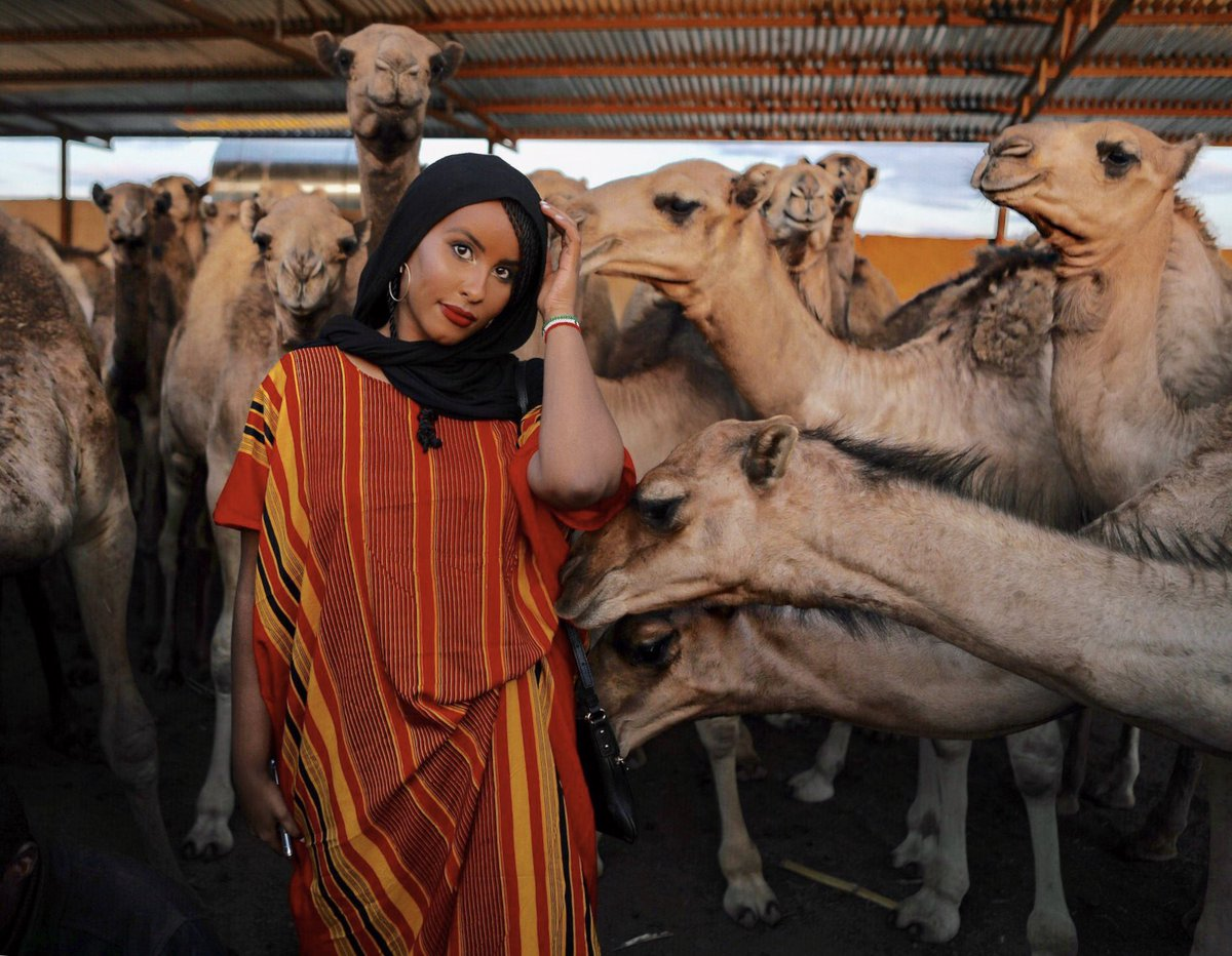 When he asks you what you want as your dowry... 🐪 #Somaliland