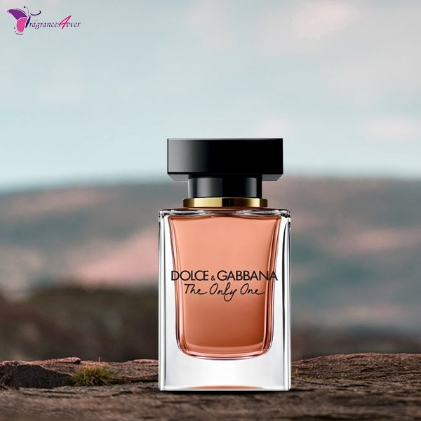 The Only One by @DolceGabbana 3.3 oz #EDP for #Women. Buy latest #luxury perfume #Online @ #Fragrances4ever. http://bit.ly/2FOTedK   #dolcegabbana #perfume #theonlyone #parfum #dgtheonlyone #fragrance #dolcegabbanaperfume #dolcegabbanaperfumes #dolcegabbanaparfum #eaudeparfumpic.twitter.com/9Em4hE6xkJ
