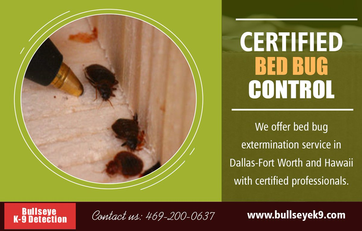 Bed Bug Treatment On Twitter Hawaii Bed Bug Extermination Https
