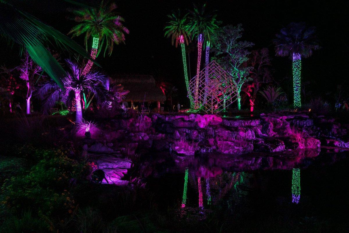 More from #NaplesBotanicalGarden #NightLightsInTheGarden event #Naples #Florida  #photooftheday #travelphotography #travel #travelphotos #tourism #travelgram #trover #picoftheday #instatravel #traveling #mytravelgram #travelingram #igtravel #traveler #SonyAlpha #sonyalphagallery