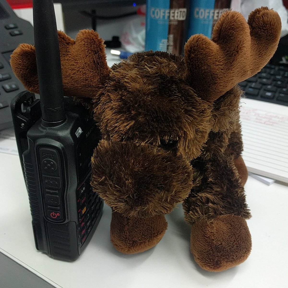 Radio Chatter! 📻 #HavocTechie // #cqcq #morris calling #cq  #AmateurRadio #hamradio #plushie #plushiesoftwitter  #BravoCharlieRadio  https://bcrlivestream.com/havoctechie/