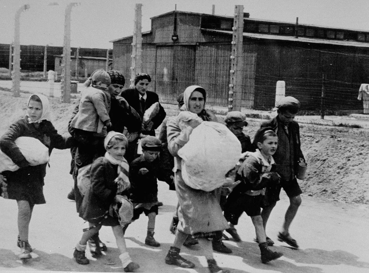 "Faces Of Auschwitz on Twitter: ""Jewish women and children who have been selected for death at Auschwitz-Birkenau, walk toward the gas chambers. #HMD2019 #HolocaustMemorialDay…  https://t.co/ps7nJ2do7q"""