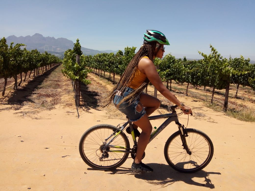 Latest Press Releases Bikes 'n Wines | Bikes 'n Wines