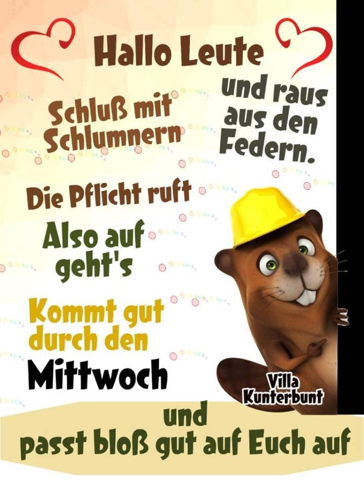 Schnattchen على تويتر Hab Mal Freipass Auf Dich