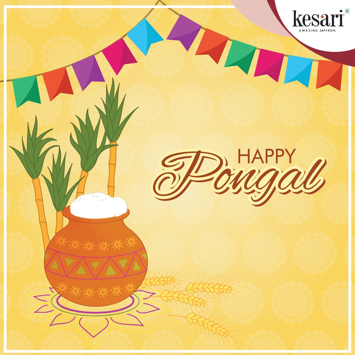 #HappyPongal (uzhavar thirunaal) to all. May this year bring you all the goodness in life. And a Big Shout out to all the #farmers for their hard work to provide the #food we #eat. Make this #Pongal even more special by just adding a pinch of #Kesarisaffron. #pongalopongal #spice