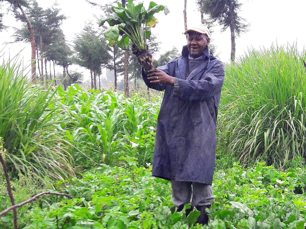 @CS_Kiunjuri @GovWOparanya @EugeneLWamalwa @A_F_Akenya. Which venue are you meeting @KiambuCountyGov @NakuruCountyGov Sugar Industry #investors #farmers to collect their views? or they must travel to Kisumu Kakamega to be heard or they are not allowed to manufacture sugar. #Kenya