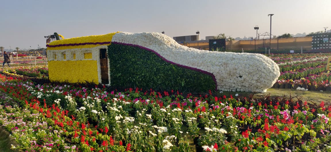 Ahmedabad Flower Show 2019 of AMC opens at Sabarmati Riverfront
