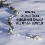 #YeniGün Twitter Photo