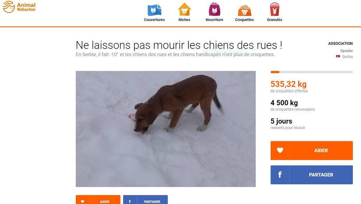 🆘#COLLECTE de #CROQUETTES🆘pour les #CHIENS des rues en Serbie. Il fait -10° ❄️ et ils n'ont plus de croquettes. AnimalWebaction #France 🆘RESTE⚠️5⃣⚠️JOURS 🆘           A👊I👊D👊E👊Z      #RETWEETEZ 🙏  🛑1 Clic #GRATUIT 👇1 Don si vous le pouvez🛑 https://www.animalwebaction.com/collectes/4958/croquettes-sos-serbie-chiens-des-rues-et-handicapes-spaske/… …
