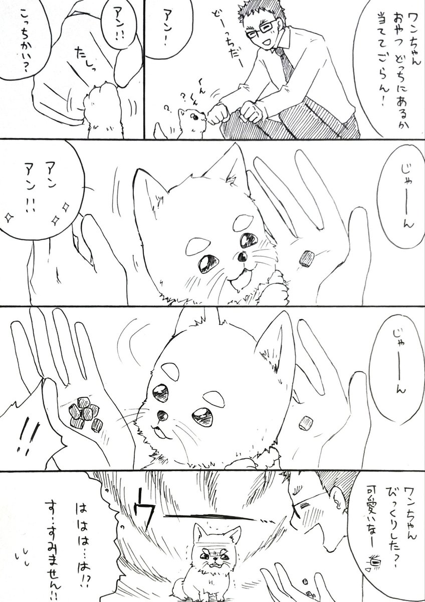 RT @ikeda111111: ハロと風見。  動物の動画で見たのをやってみた風見。 https://t.co/Tj6hzajBAt