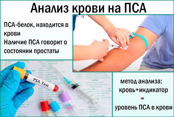 Сдать анализы на пса правильно крови как свертывания анализ время крови норма