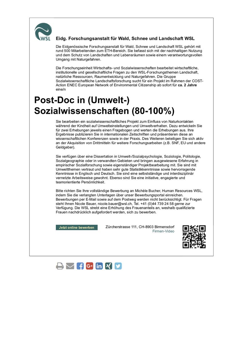 Amp Pinterest In Action Lettering Memo Template Memo 12