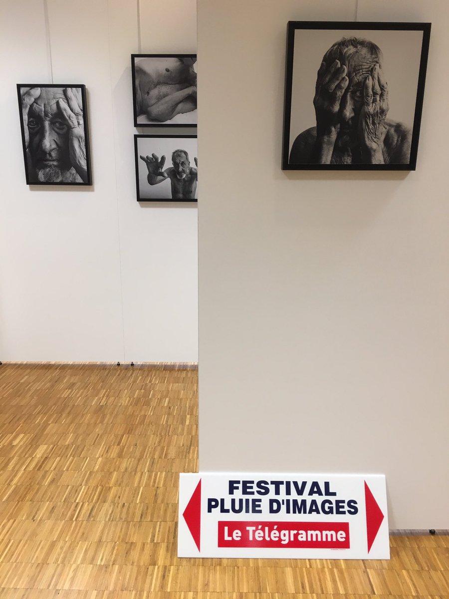 Festival photo (@pluiedimages)