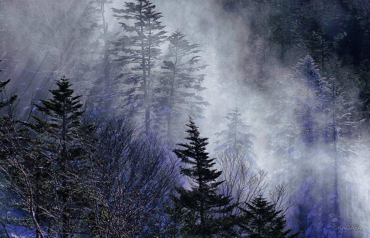 結晶の季節。(先日撮影) 1、霧氷。 2、風に舞う雪。 3、雪の結晶。 今日もお疲れさまでした。明日もおだやかな1日になりますように。