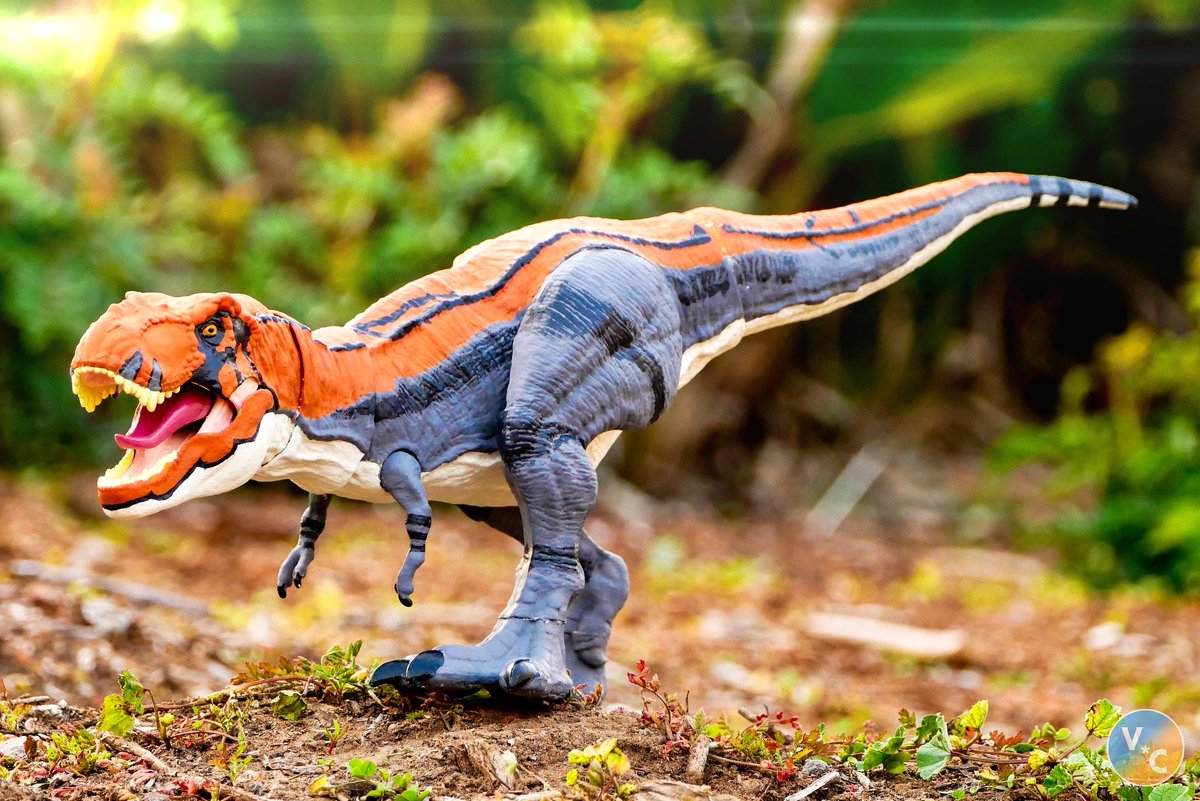 """Rule of the Bull""  I thought I'd get one last photo of this guy before I repaint him again.   #MattelJurassicWorld #JurassicWorld #TRex #Tyrannosaurus <br>http://pic.twitter.com/n5b5aBTWco"