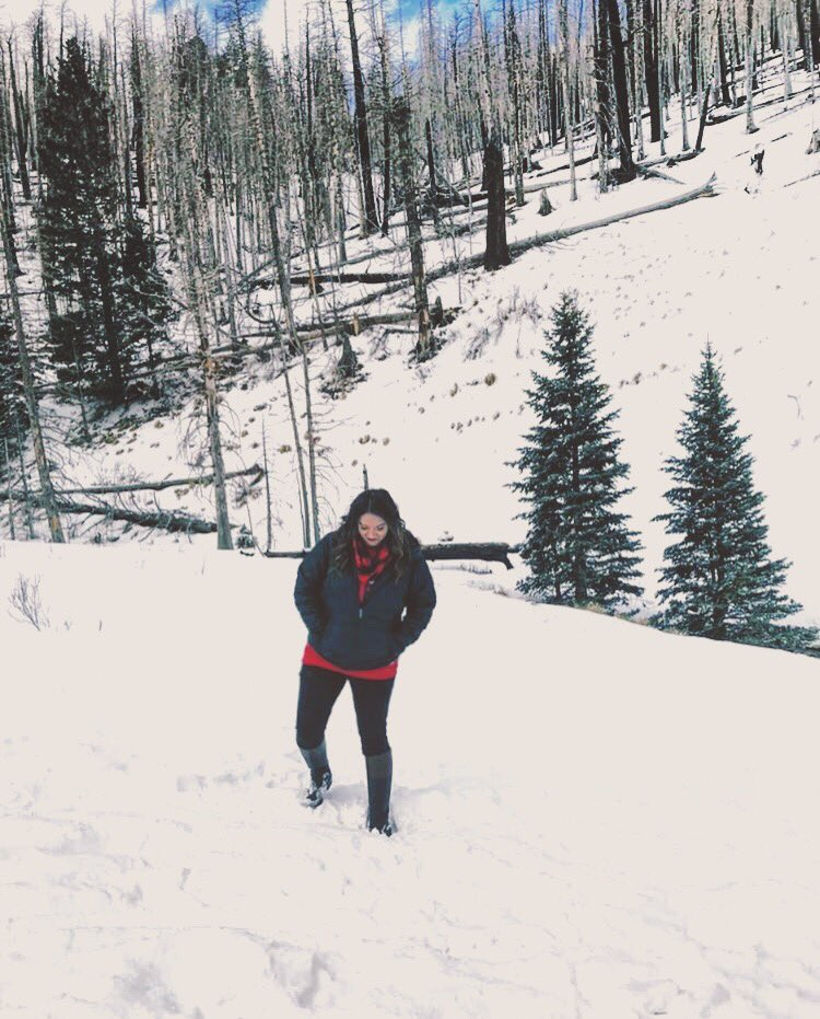 Baby, it's cold outside. ❄️ #cold #winter #ruidoso #newmexico #travel #traveler #snowpocalypse2019 #freshsnow https://t.co/ta8VSrp6yn