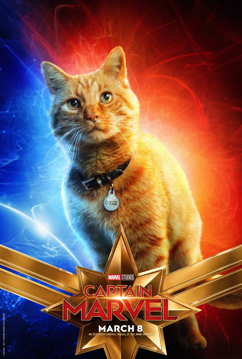 The most important character poster of the year... #CaptainMarvel's Goose