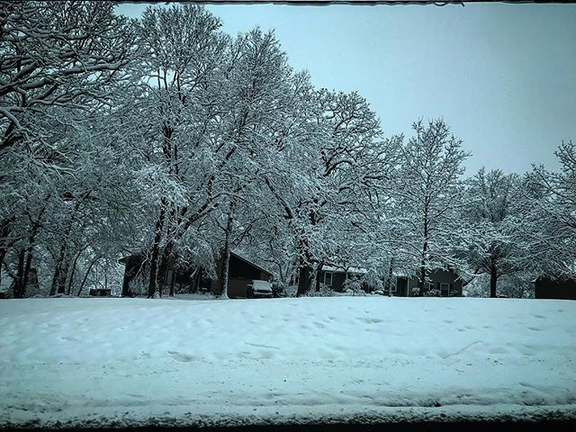Driving around at lunch after a recent snow storm. #snow #snowy #snowstorm #snowcoveredtrees #coolclouds #kswx #kcwx #lenexa #iphonephotography #iphonephotographer #iphonephoto #iphonephotos http://bit.ly/2VXR94c
