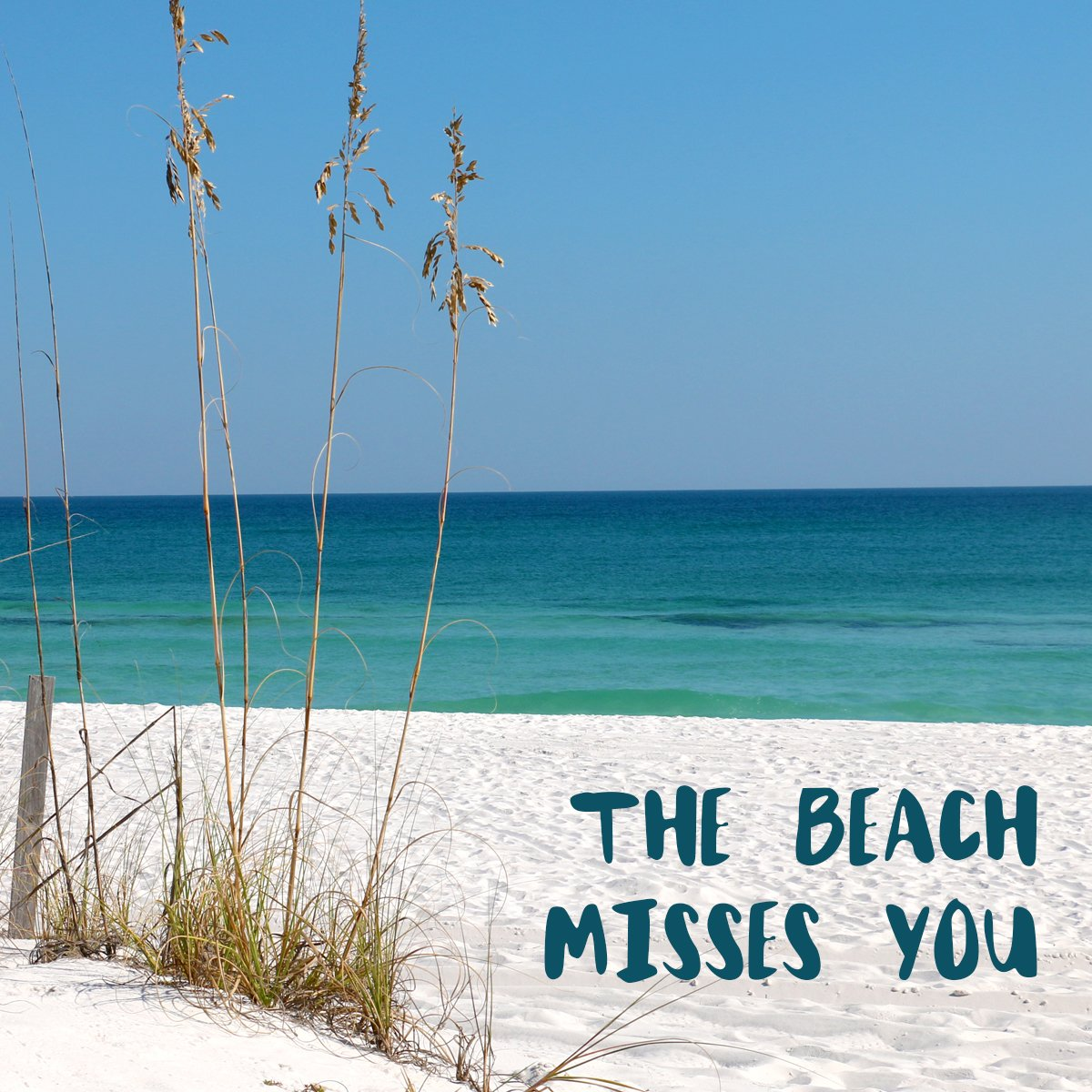 We know you miss it too!   #PanamaCityBeach #BSRPCB<br>http://pic.twitter.com/dbxXr5LArC