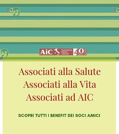 Siamo #volontari❤️siamo #celiaci❤️siamo genitori di bambini celiaci❤️Noi di #AIC ci associamo ad AIC. E tu❓Scopri tutti i #benefits ▪️ Solo 30 euro l'anno ▪️ c/c postale N° 68812379 ▪️ Bonifico Bancario alle seguenti coordinate: IBAN IT28 Y076 0116 9000 0006 8812 379