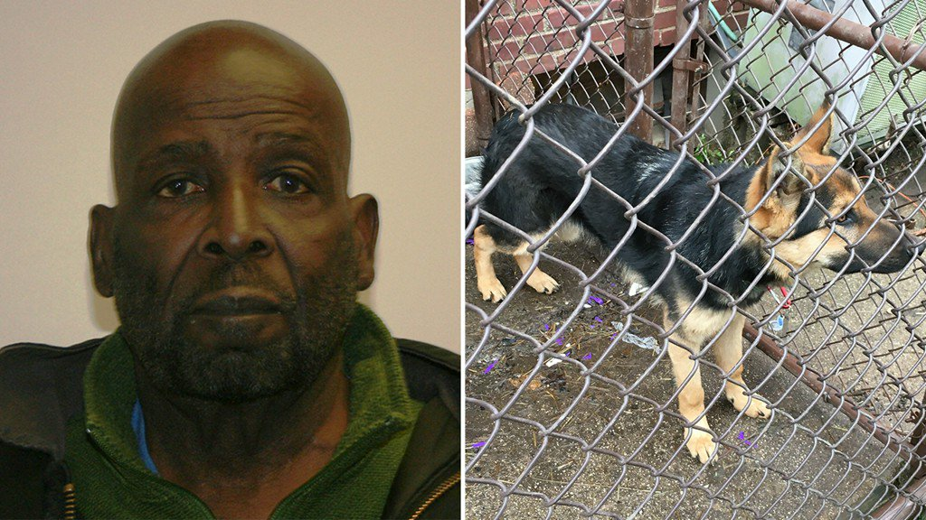 Man charged with starving dog to death; Puppy rescued from home https://t.co/zLIHgC8DY8