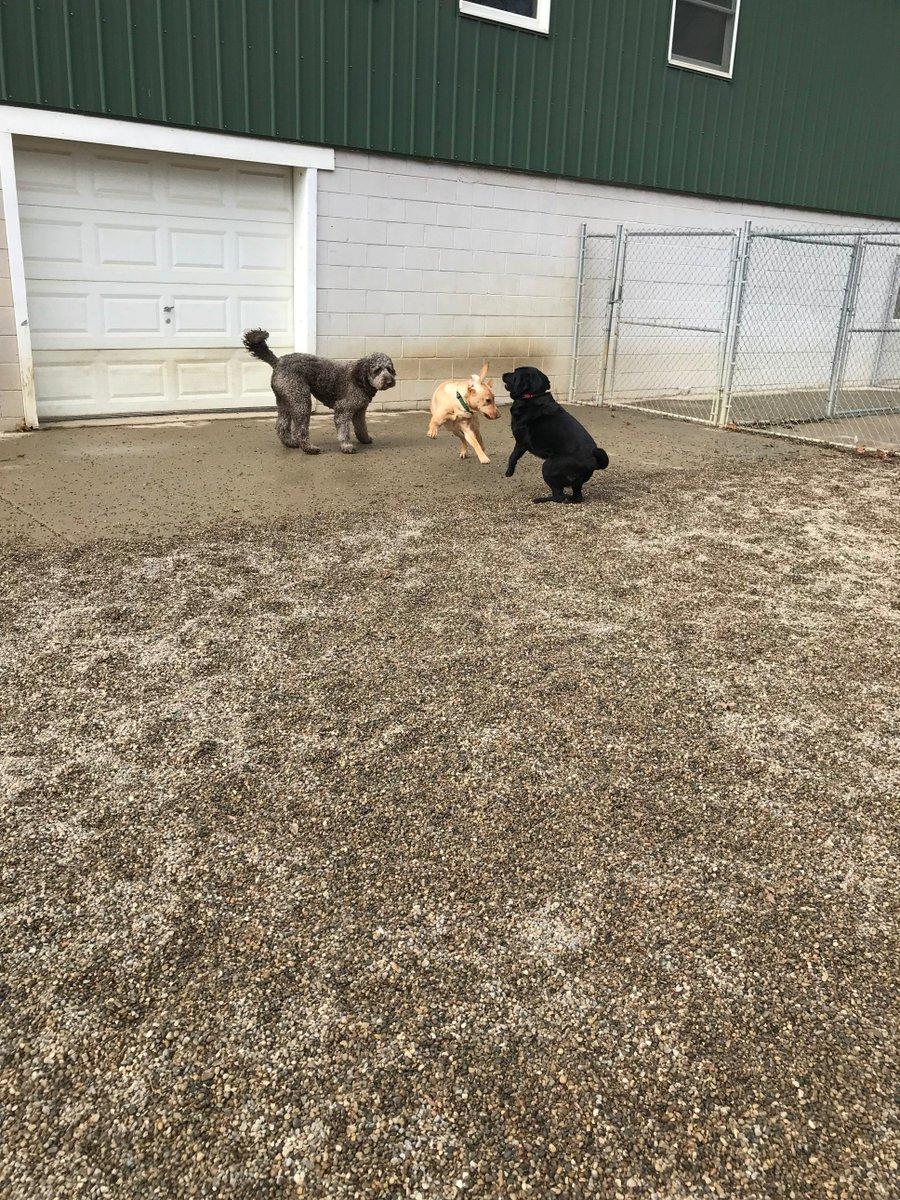 Kipling darts past Tucker and Greta