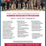 It's that time of year again!! Please spread the word that we are accepting applications for the PURE #pain and NURE #neurodegeneration summer #undergrad research programs @youinthelab @ACSUndergrad @sacnas @AmericanPainSoc Application deadline is Feb 15, 2019
