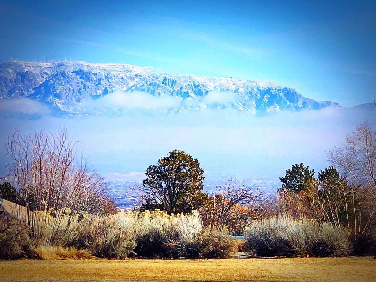 Tuesday morning's view of the fog/smog in ABQ... 📸: Krista Armijo @KOB4 #nmwx