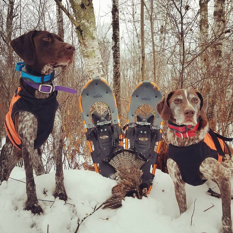I&#39;m really missing January ruffed grouse hunting in Wisconsin this year . . . <br>http://pic.twitter.com/rcc9wnk8nX