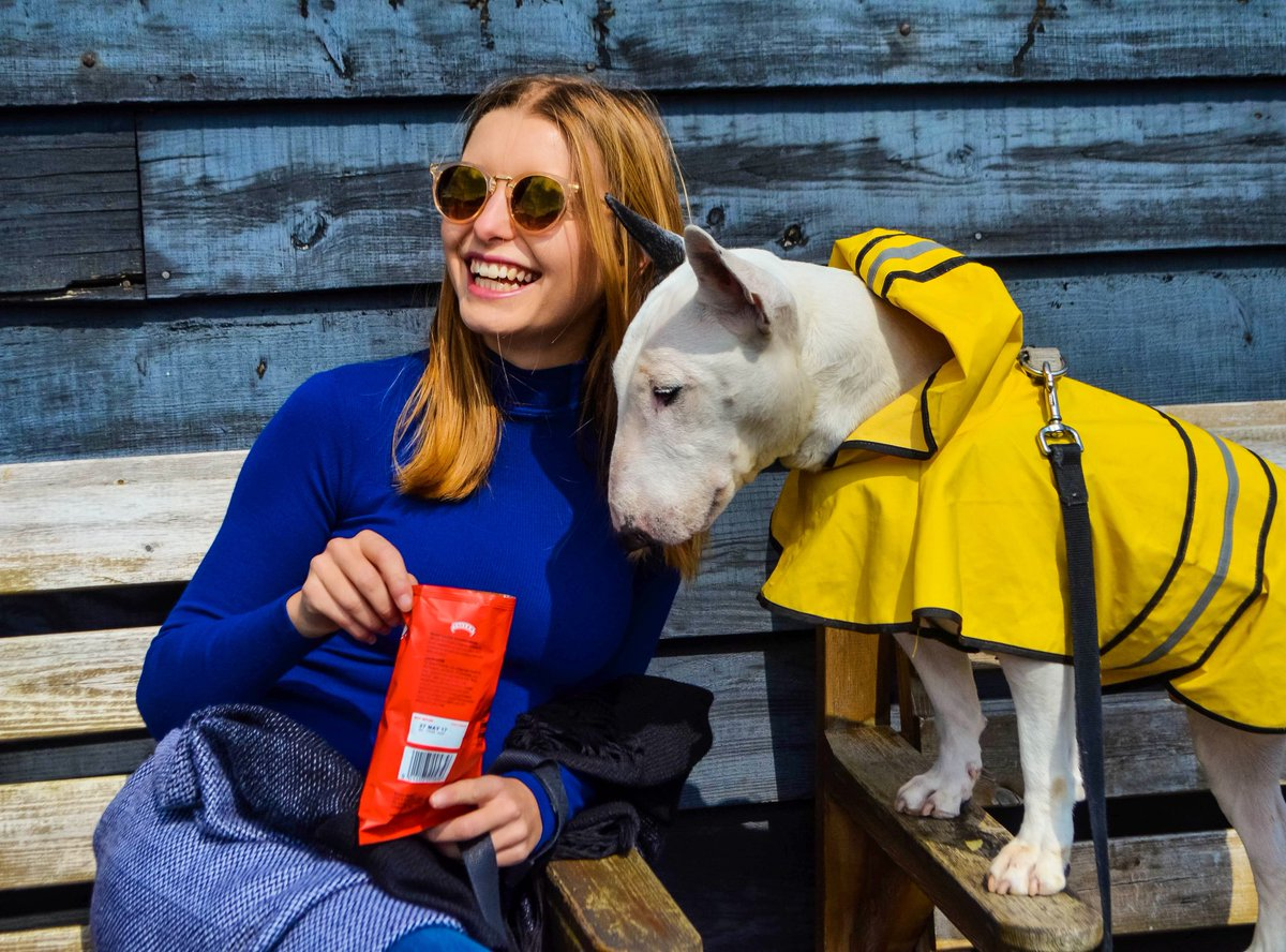 I'm always serious about a bag of crisps  . . . #dogs #dog #puppy #bullies #bullterrier #dogmodel #dogmodeling #dogtravel #traveldog #dogsoftwitter #dogsofinstagram<br>http://pic.twitter.com/AZA1mCyJxT