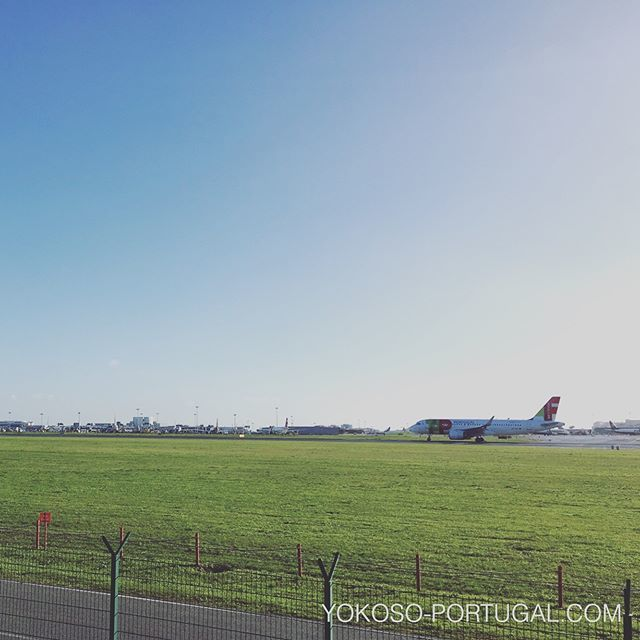 test ツイッターメディア - ポルトガルのフラッグ・キャリア、TAPポルトガル航空。時間には少しルーズです。 #ポルトガル https://t.co/camXqaKCDd