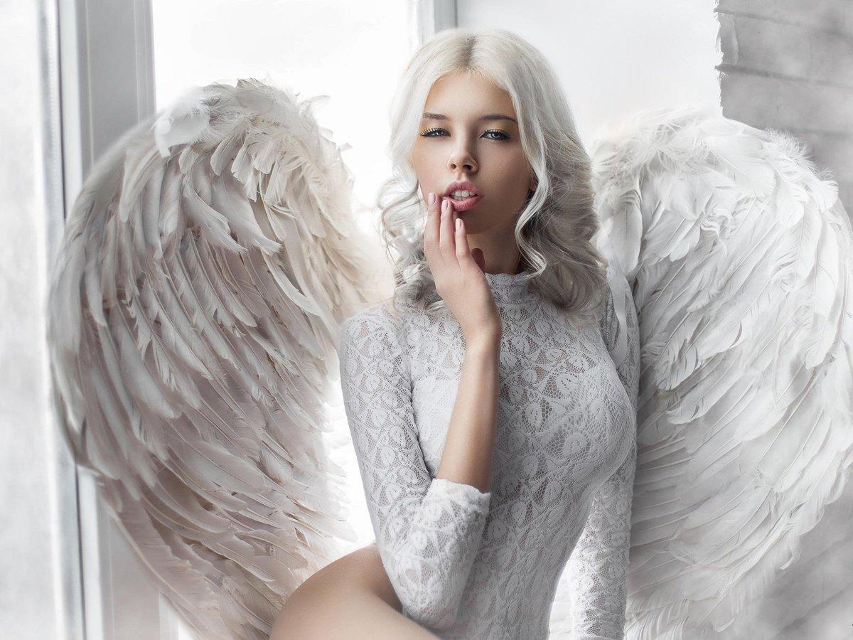 почтила фото белого ангела такое фиалковый корень