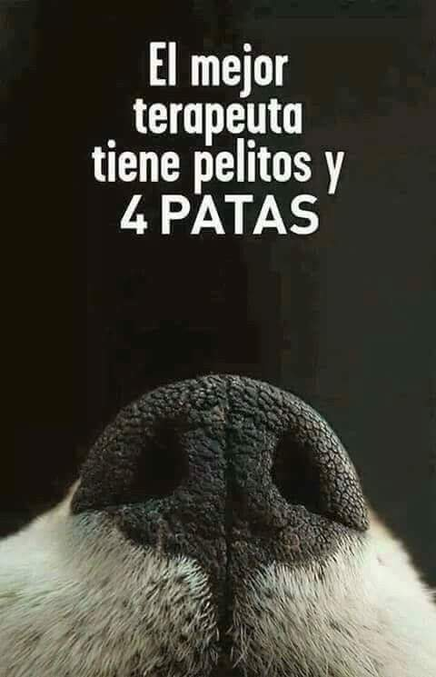 Nydia Cervera's photo on #FelizJueves