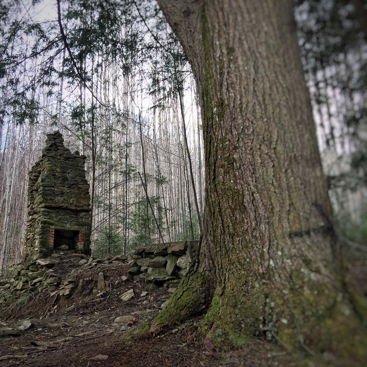 Amy Lauren Strange On Twitter Chimney Graveyard Elkmont Tn