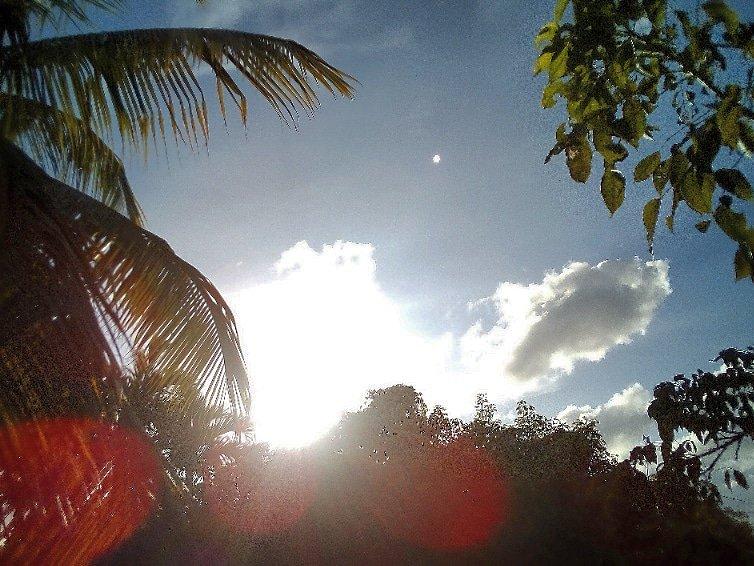 @JorgeG179 #Miami #Sky #Sunshine #Clouds #Palmtrees #photo #photodaily #phototoday #photoftheday #photograph #photographer #photography #photoofday #photooftheweek #photos #photosession #photostudio #skyphotography #sunrays #sunflares #lensflare #SunshineOneMorning #riseandshine