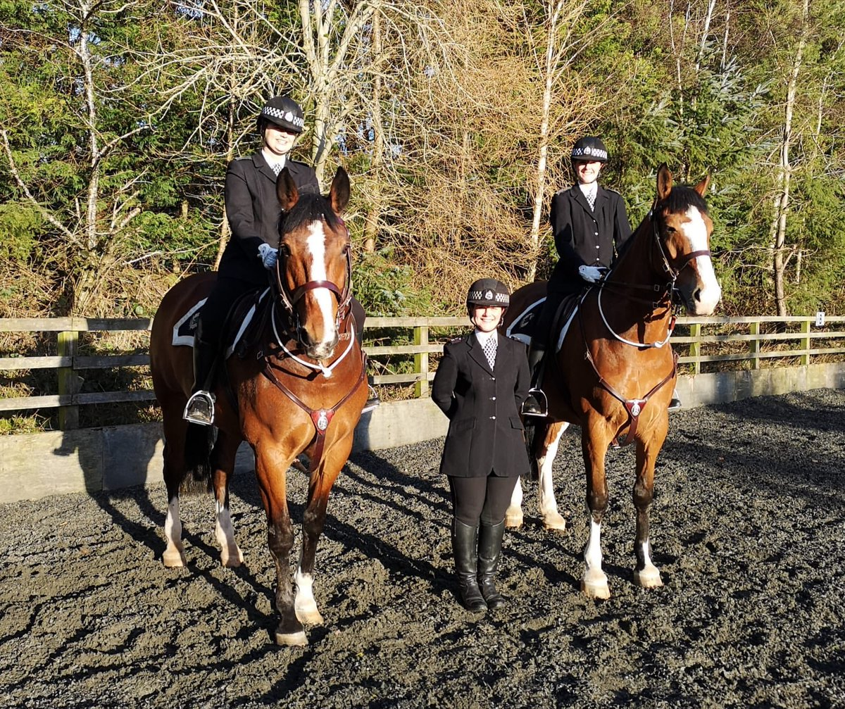 SUCCESS! PCs Jardine and Graham both passed their Standard riding course today with flying colours after 16 weeks hard work. Here they are pictured with their trusty steeds Oban and Lockerbie along with senior management &amp;  their wonderful instructor PC Knowles. #emotionalday<br>http://pic.twitter.com/wkzyntyKpF