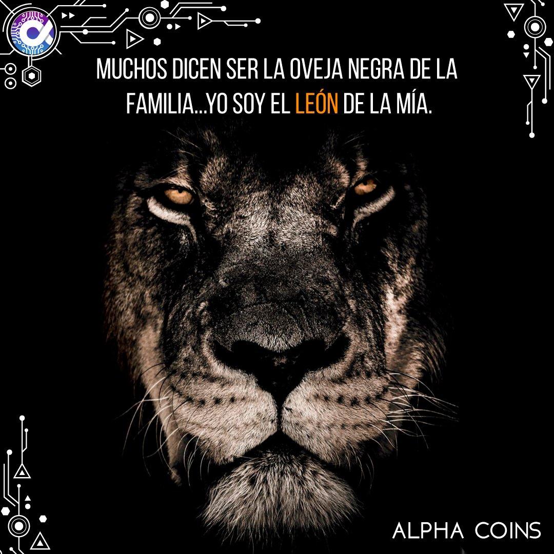 Alpha Coins En Twitter Muchos Dicen Ser La Oveja Negra De