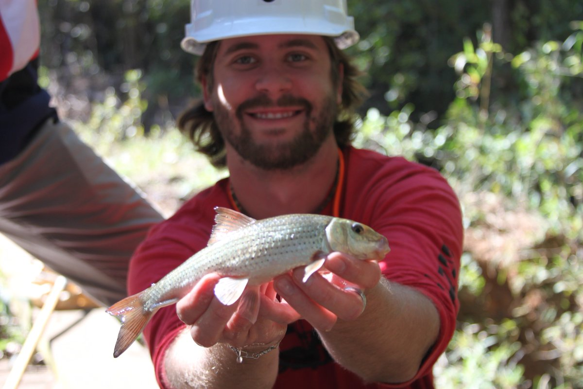 Thanks to Texas' abundant freshwater and marine ecosystems, there are literally hundreds of fish species at our fingertips! #ThrowbackThursday to 2015 forest hydrology lab. Learn more here: https://tpwd.texas.gov/landwater/water/aquaticspecies/inland.phtml… #Hydrology #ichthyology