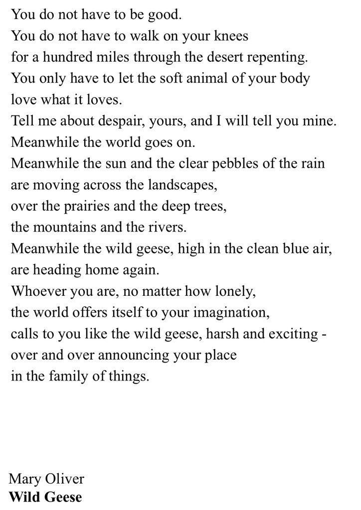 Thank you, Mary Oliver. This poem meant the world to me.
