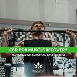 CBD has some great benefits post workout 🏋️♀️ 💪🏽💚 😊 #Cannavus #CBD #Cannabidiol #CBDOil #FullSpectrumCBD #CBDUK #CBDLife #CBDVape #CBDCommunity #hempCBD #CBDHemp #CBDFitness #CBDHealth #CBDBenefits #anxiety #migraine #depression #health #fitness #inflammation